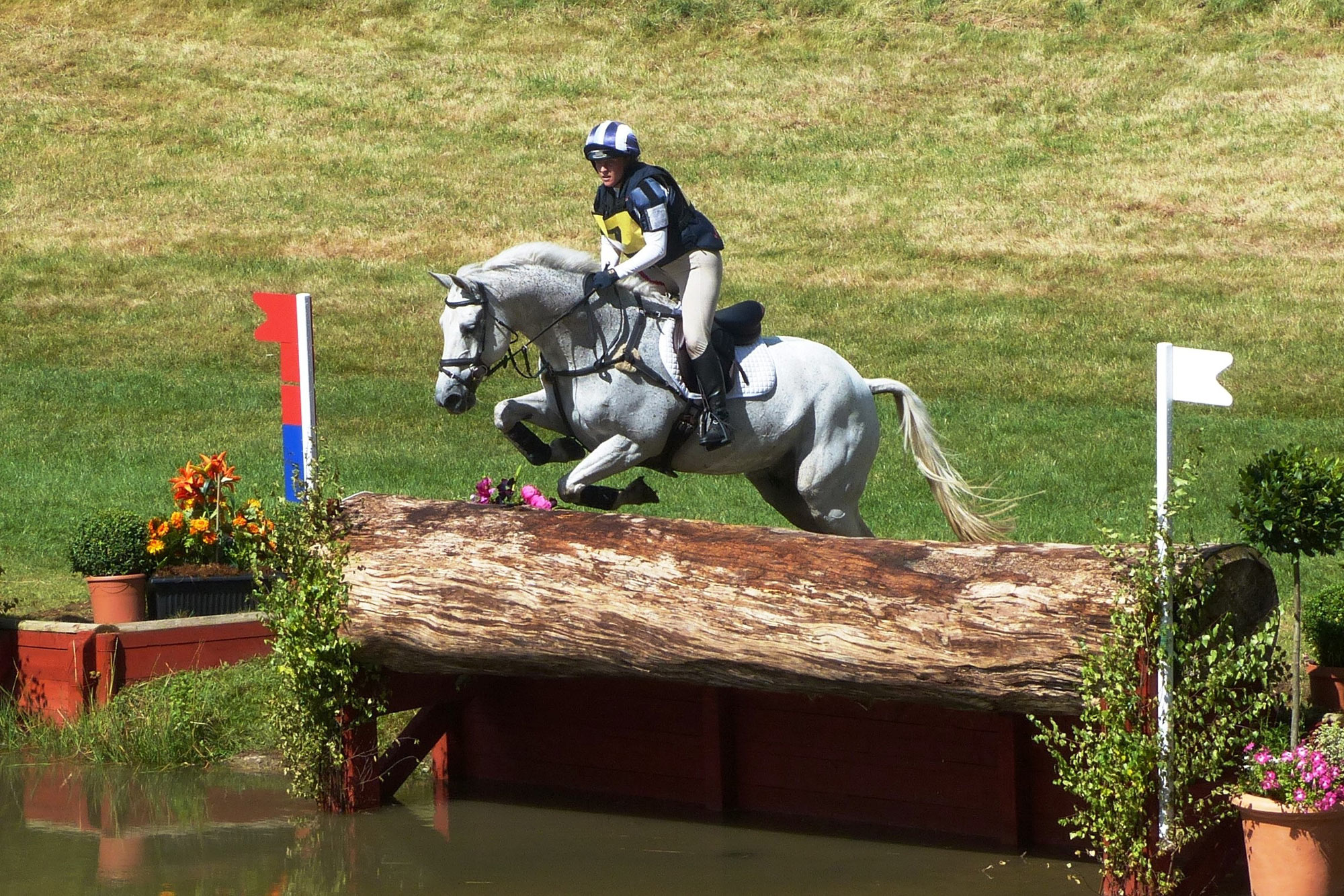 3-Day Eventing Equine Insurance