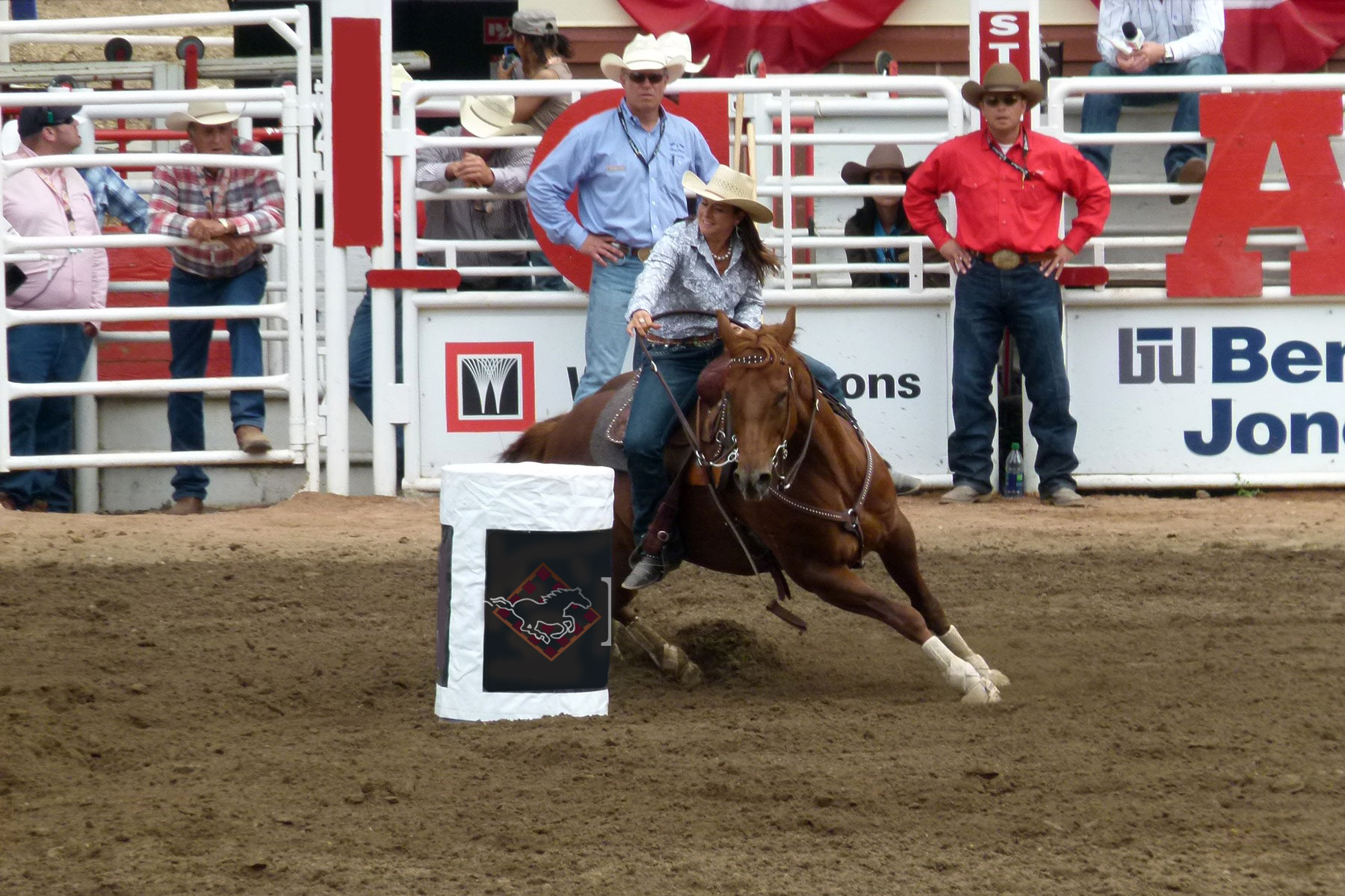 Barrel Racing Horse Insurance