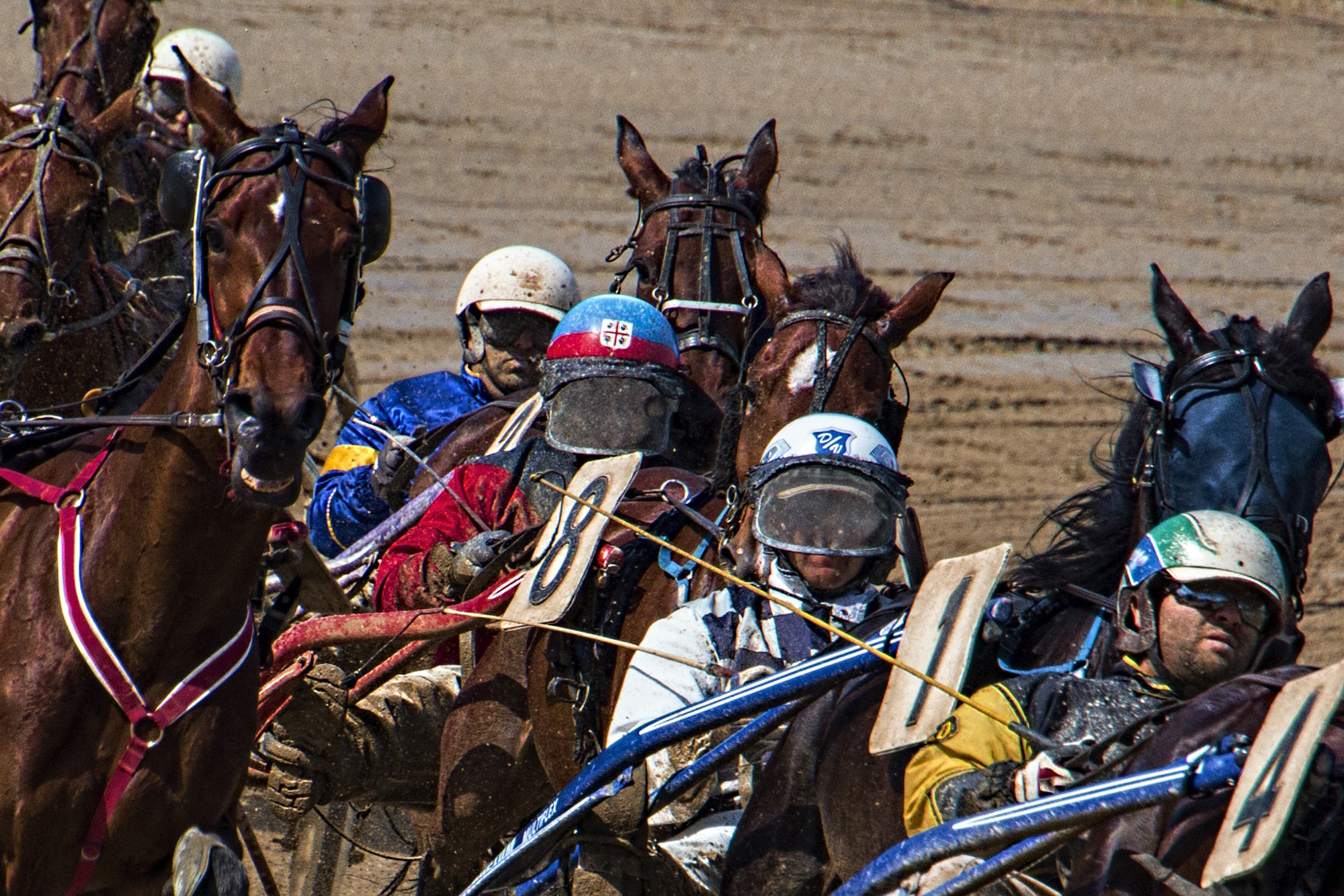 Standardbred Harness Racing Insurance
