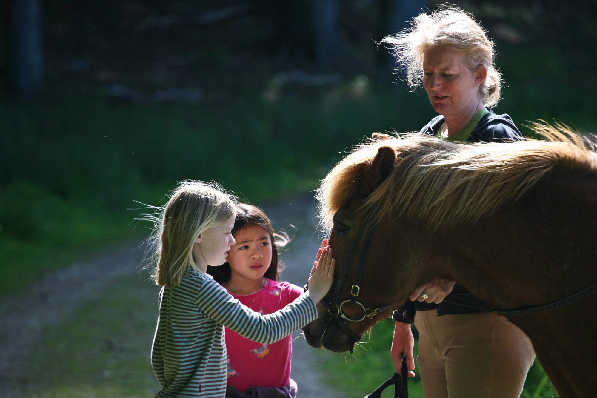 Horse Club Liability Insurance