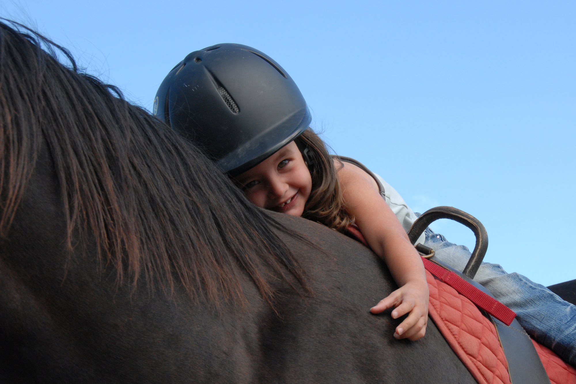 Therapeutic Riding Insurance